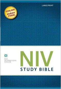 NIV Study Bible Large Print Hardcover