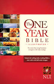 The One Year Bible Illustarted Devotional NLT Paper back