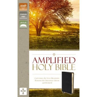 amplified-bible-bonded-leather