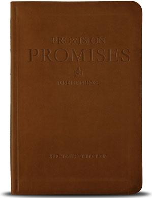 provision-promises