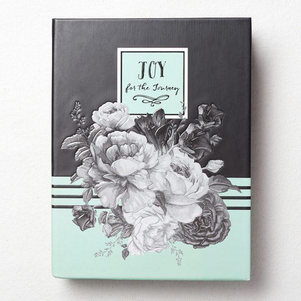 JL238_1-JOURNAL JOY